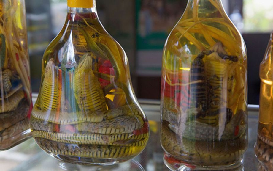 AD06FM Snake wine on sale Cu Chi Tay Ninh Province Vietnam