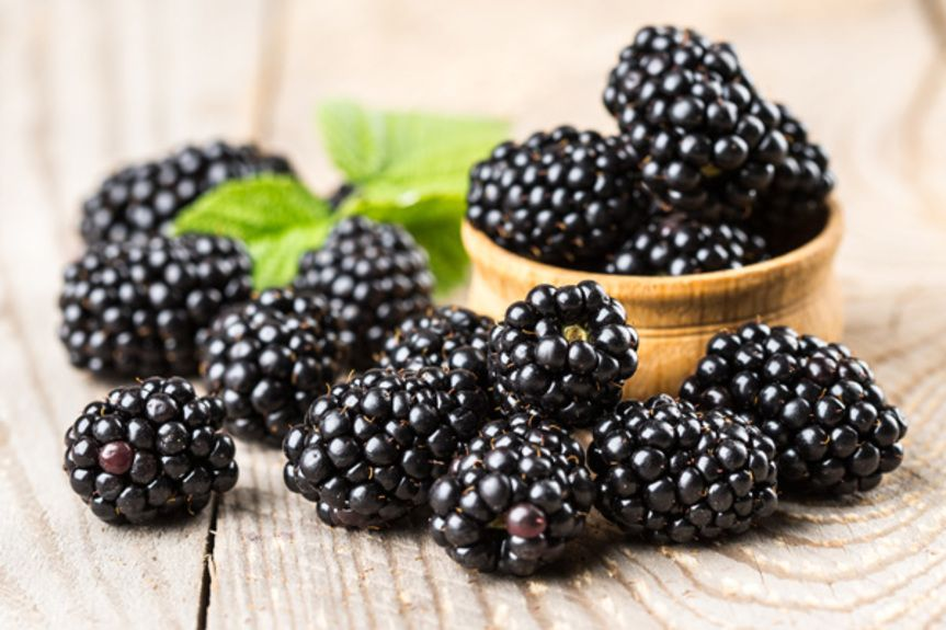 blackberries_206260981