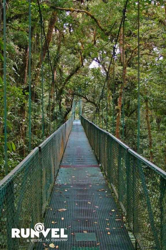Monteverde-48