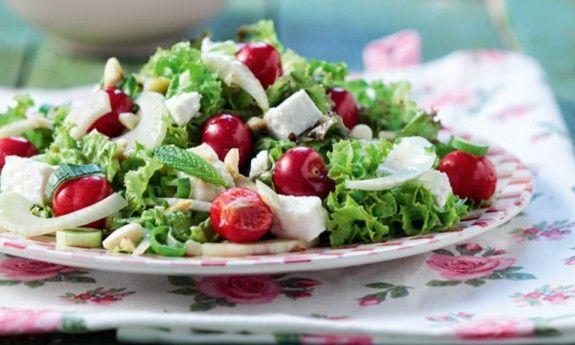 droseri-anamikti-salata-me-kerasia-anoigma