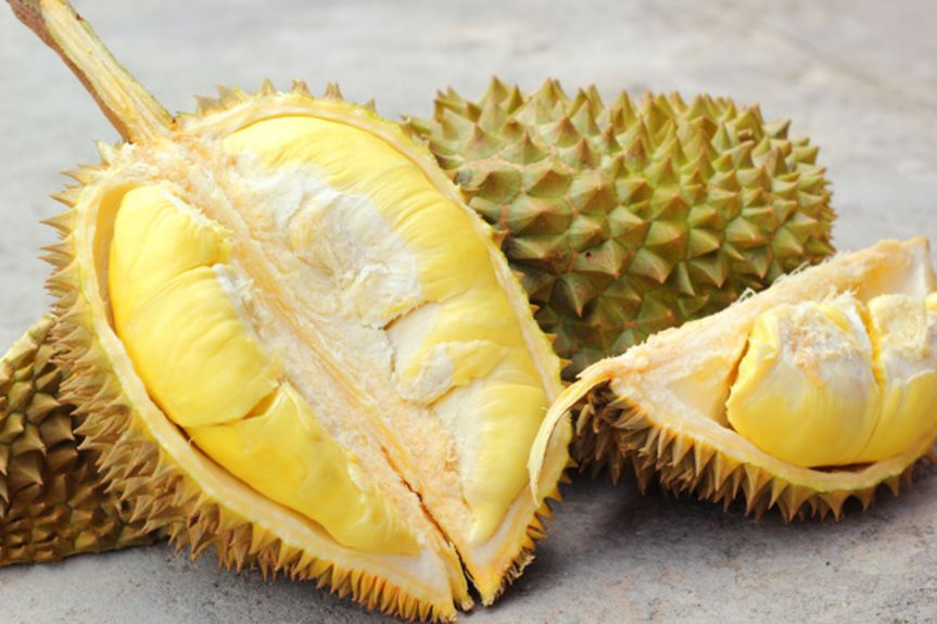 durian_201310310