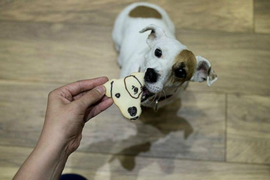 original_Customised-Cookie-Cutter-dog