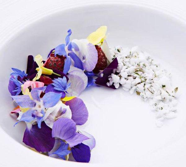 geranium-mikri