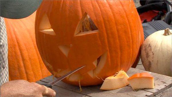 msl_pumpkin3
