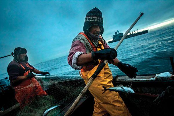 9-©-Meridith-Kohut--WWF-US