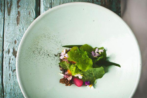 Hisa-dish1-blog