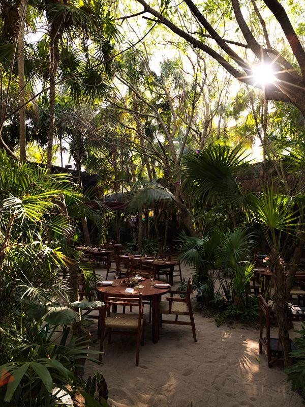 Dining-Room---Noma-Mexico