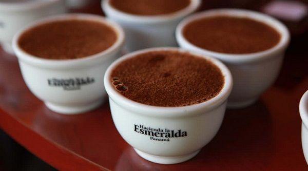 Hacienda-la-Esmeralda