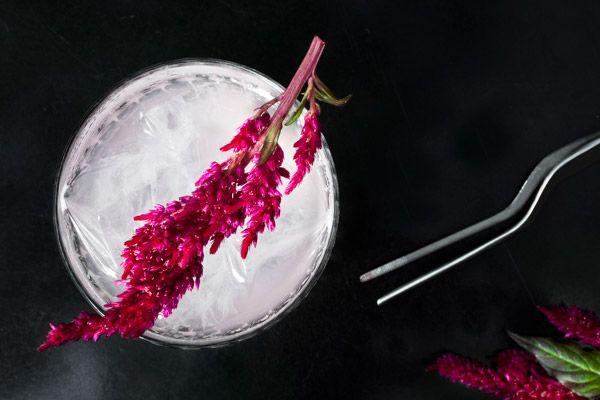 Conceptual-Form-cocktail