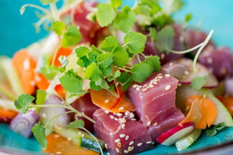tuna2 (1)