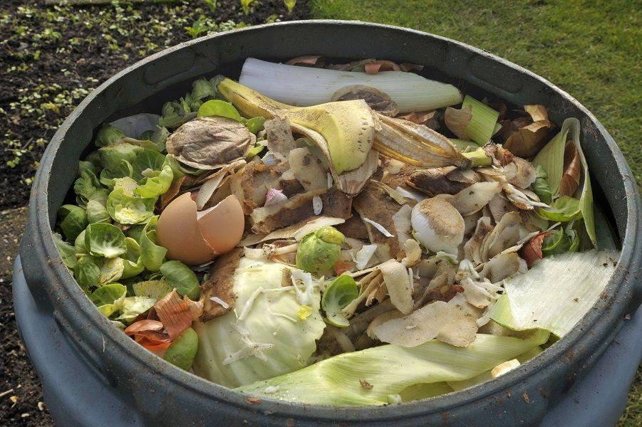 skoupidia kompostopoihsh 2