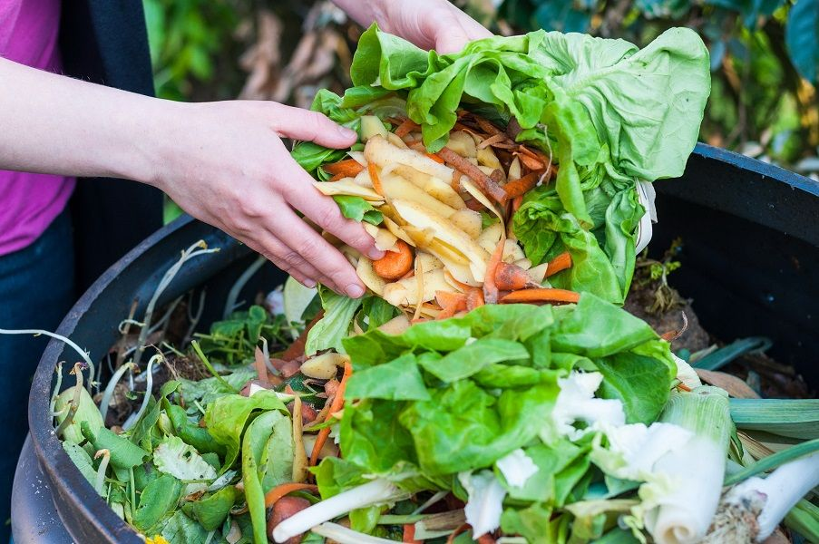 45903051 - composting the kitchen waste