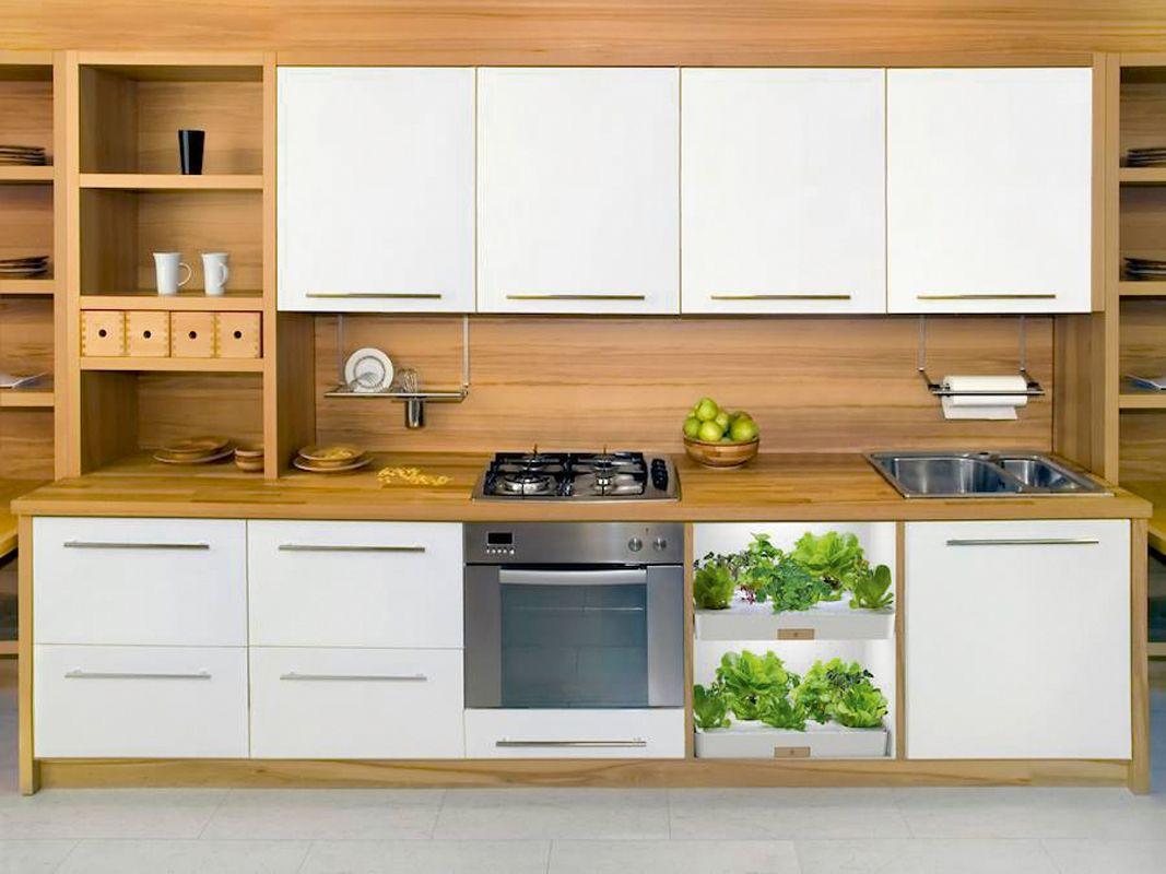 Vegidair_kitchen_herb_garden